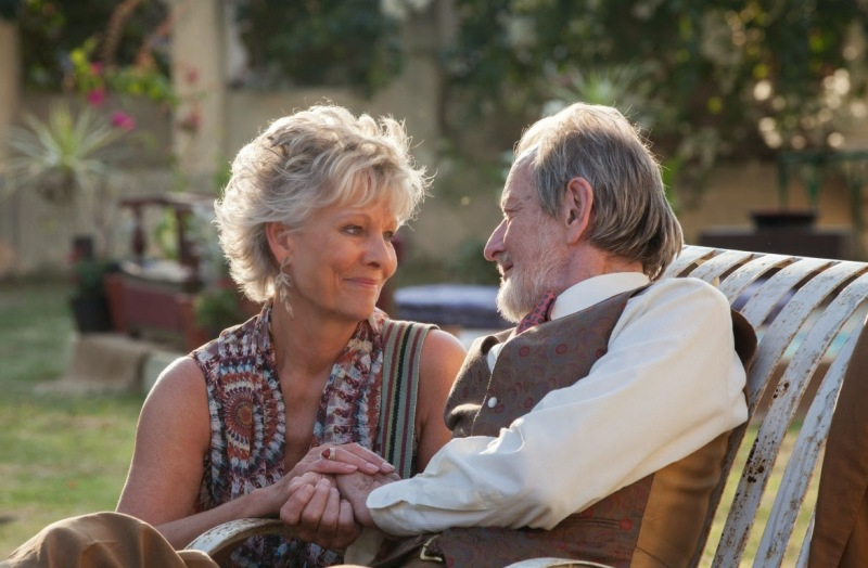 The-Best-Exotic-Marigold-Hotel-2 (2) (1)