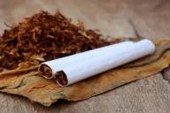 nikotin (1)